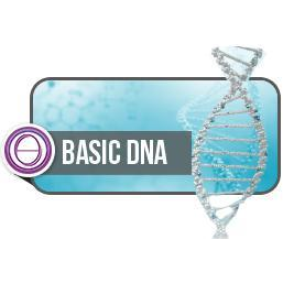 ThetaHealing® DNA Base ONLINE
