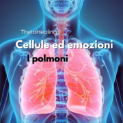 Cellule ed emozioni: i polmoni